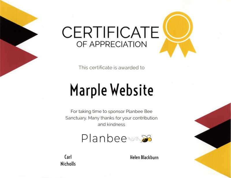 Plan Bee certificate