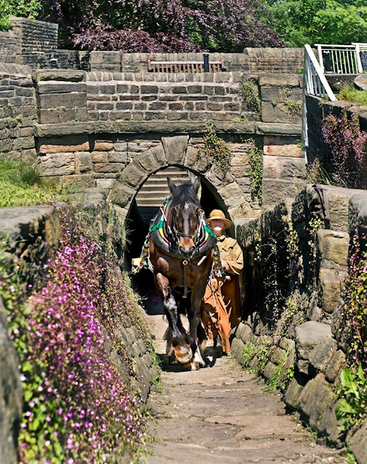 Sue Day exits the Horse Tunnel