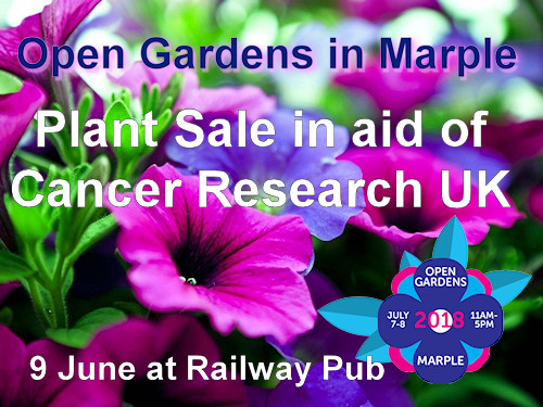 Open Gardens in Marple Plant Sale