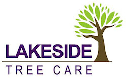 lakeside-tree-care-logo
